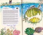 mjf_sketchbook-p38_39