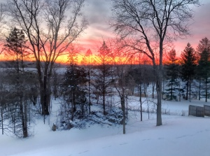 Sunset over snowy field and woods